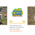 Promise Land Family Fun Farm, Belleville