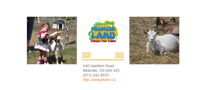 Promise Land Petting Farm