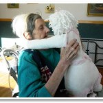 Bringing Comfort: Heaven Hugs Doll Therapy