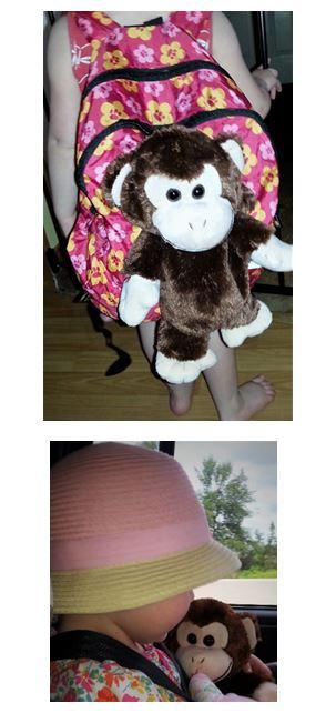 Monkey Pet Sac