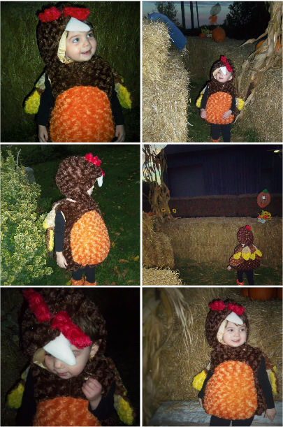 Classic Turkey Toddler Costume
