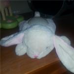 Dream Buddies™ - Bunny
