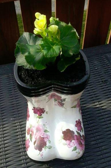 Rainboot planter
