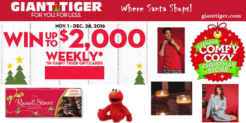 Last-Minute Gift Ideas from Giant Tiger