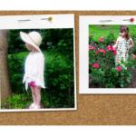 Appaman Kids Summer Collection