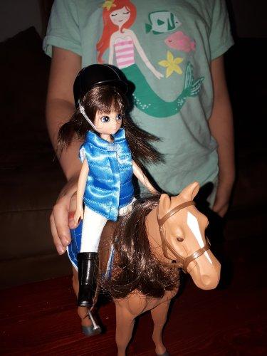 Sirius the Welsh Mountain Pony