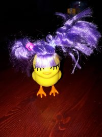 Chicks with wigs