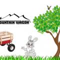 Duncan Toys Mountain Wagon