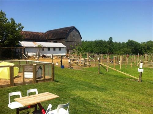 Promise Land Farm