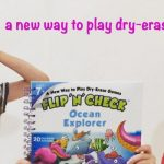 Flip N' Check Activity Books