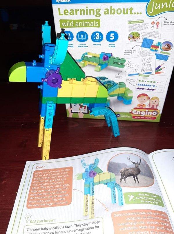 Engino STEM toys