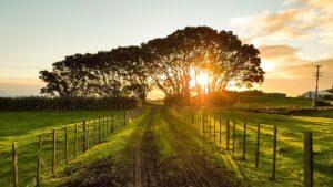 countryside sunset landscape