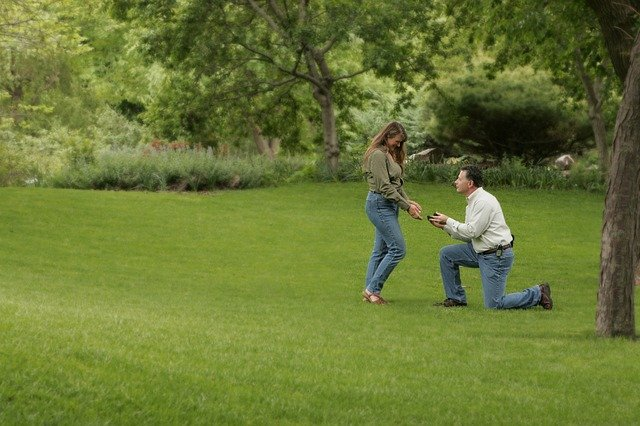 Happily Ever After: An Unlikely Proposal
