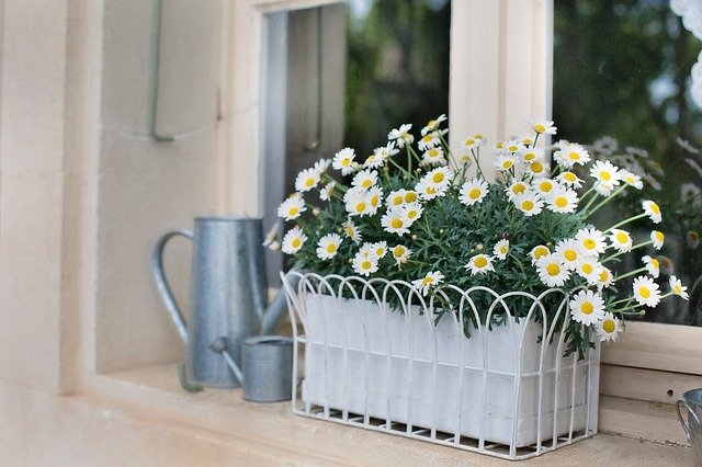 planters and plant boxes