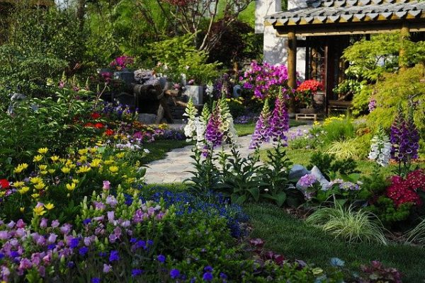 How to make your garden and outside space appear homelier and more inviting