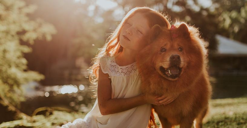 How Dog Ownership Supports a Child's Development