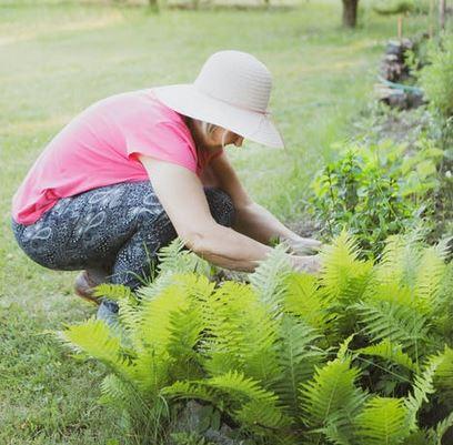 gardening outside