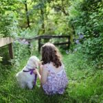 The Benefits of a Family Pet